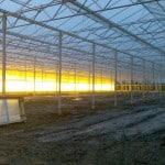 101 150x150 Systemy szklarniowe w Sonderso