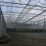 106 150x150 System szklarniowe w Bergen