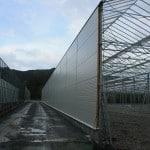 1111 150x150 System szklarniowe w Bergen