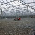 146 150x150 System szklarniowe w Bergen