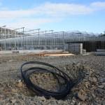 151 150x150 System szklarniowe w Bergen