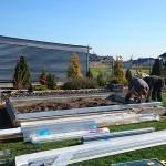 160 150x150 Szklarnia ogrodowa w Wieluniu