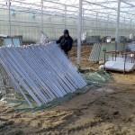17 150x150 Systemy szklarniowe w Sonderso