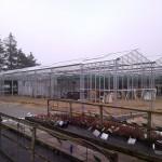25 150x150 Systemy szklarniowe w Esbjerg