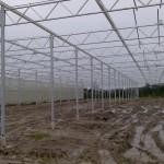 311 150x150 Systemy szklarniowe w Sonderso