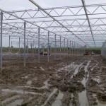 34 150x150 Systemy szklarniowe w Sonderso