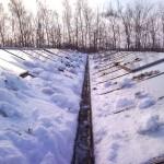 49 150x150 Systemy szklarniowe w Otterup