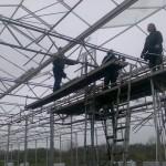 51 150x150 Systemy szklarniowe w Sonderso