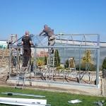 714 150x150 Szklarnia ogrodowa w Wieluniu