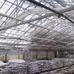 73 150x150 Systemy szklarniowe w Kopenhadze