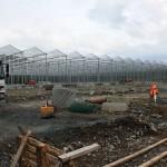 76 150x150 System szklarniowe w Bergen