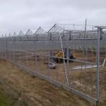 81 150x150 Systemy szklarniowe w Sonderso