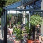 GreenHouse Arcadia Orangerie 018 150x150 Orangerie