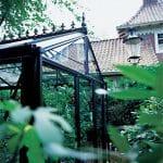 GreenHouse Senior Victorian 004 150x150 Victorian