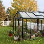 GreenHouse Senior Victorian 012 150x150 Victorian