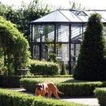 GreenHouse Oranzerie Professional 007 150x150 Orangerie Professional