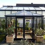 GreenHouse Oranzerie Professional 032 150x150 Orangerie Professional