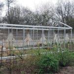 20160414 105359 150x150 Szklarnia ogrodowa w Będzinie