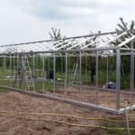 20160518 151653 150x150 Szklarnia ogrodowa w Szymanowie