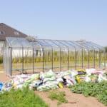 DSC 1314 150x150 Szklarnia ogrodowa w Różnowie