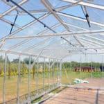 DSC 1316 150x150 Szklarnia ogrodowa w Różnowie