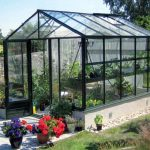 GreenHouse Szklarnie MAXI ON WALL 024 150x150 MAXI ON WALL