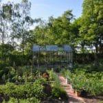13 150x150 Szklarnia ogrodowa w Bystrzycy Kłodzkiej