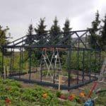 DSC 0396 150x150 Szklarnia ogrodowa w Sędziejowicach
