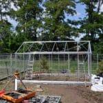 DSC 0797 150x150 Szklarnia ogrodowa w Komornikach