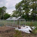 DSC 0813 150x150 Szklarnia ogrodowa w Komornikach