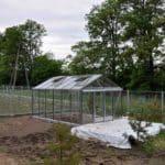 DSC 0830 150x150 Szklarnia ogrodowa w Komornikach