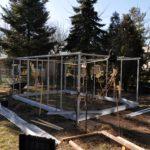 DSC 0018 min 1 150x150 Szklarnia ogrodowa Rusinowice