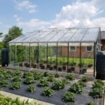 05 20 150x150 Szklarnia ogrodowa Rędziny