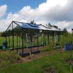05 4 150x150 Szklarnia ogrodowa Kotkowo