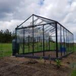 14 4 150x150 Szklarnia ogrodowa Kotkowo
