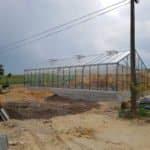 15 7 150x150 Szklarnia ogrodowa Mstów