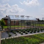 15 9 150x150 Szklarnia ogrodowa Rędziny