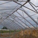 24 2 150x150 Szklarnia ogrodowa Mstów