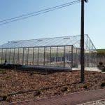 image1787 150x150 Szklarnia ogrodowa Mstów