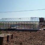 image1788 150x150 Szklarnia ogrodowa Mstów