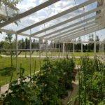 15 11 150x150 Oranżeria ogrodowa Mrowla