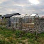 17 4 150x150 Szklarnia ogrodowa Szyszków