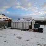 image021 4 150x150 Szklarnia ogrodowa Babienica