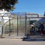 image1601 150x150 Szklarnia ogrodowa Olesno