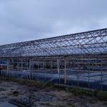 01 min 3 150x150 Systemy szklarniowe w Esbjerg