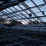 09 min 3 150x150 Systemy szklarniowe w Esbjerg