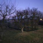 18 min 2 150x150 Szklarnia ogrodowa Czerwionka Leszczyny