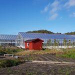 34 150x150 Systemy szklarniowe w Grimstad