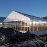 50 150x150 Systemy szklarniowe w Grimstad
