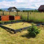 image001 2 150x150 Szklarnia ogrodowa Kalna